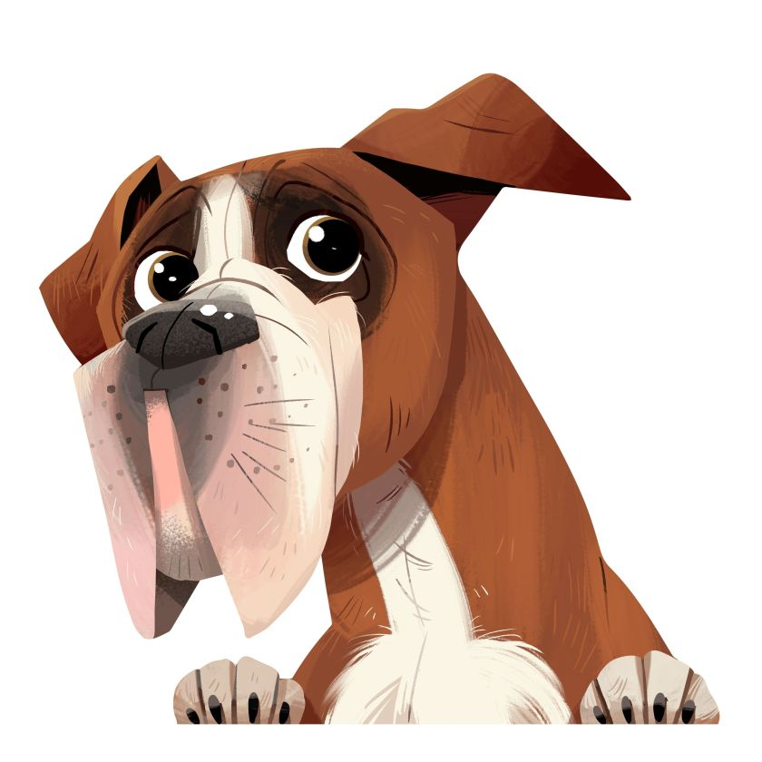 Boxer Dog Illustration